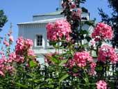 Раифские цветники, 2002 год.